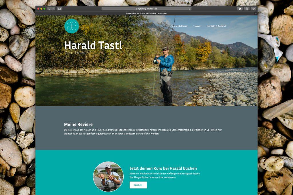 harry-tastl-web